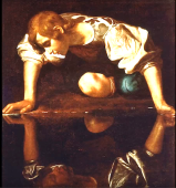 Narcissus4.png