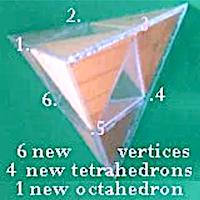Tetra100