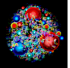 proton-small