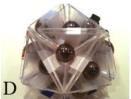 icosahedron-d